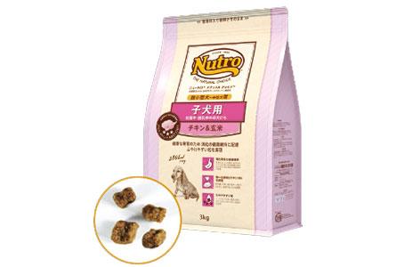 ナチュラルチョイス「プレミアムチキン」チキン&玄米 超小型~中型犬 子犬用