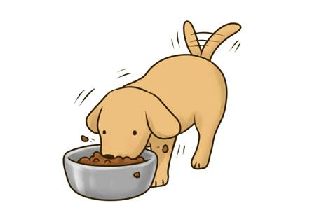 なぜ大豆はドッグフードに使用されているの?