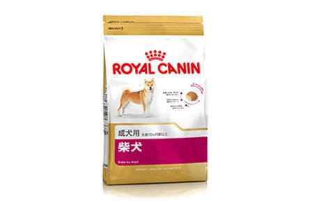 中型犬向け商品(柴犬)