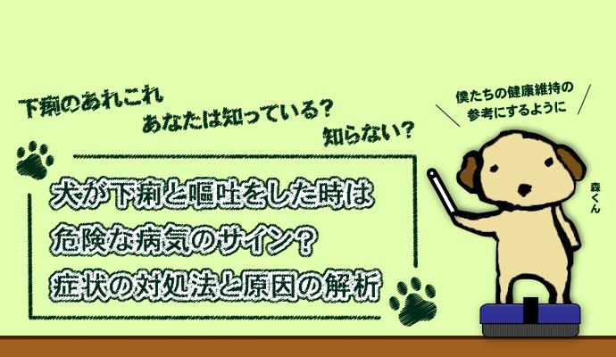 犬が下痢と嘔吐をした時は危険な病気のサイン?症状の対処法と原因の解析