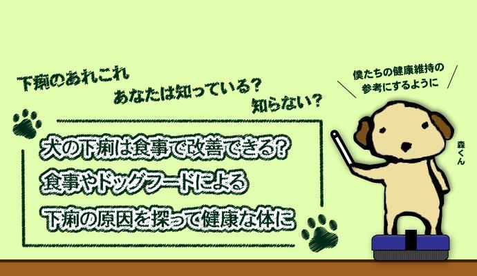 犬の下痢は食事で改善できる?食事やドッグフードによる下痢の原因を探って健康な体に