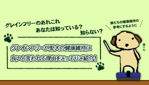 グレインフリーが愛犬の健康維持に良いと言われる理由をこっそりご紹介!