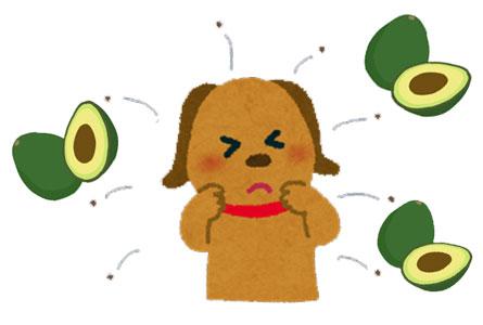 愛犬がアボカドを食べてしまった時の症状