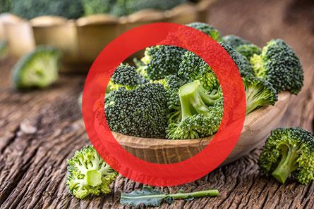 犬はブロッコリーを食べても大丈夫!