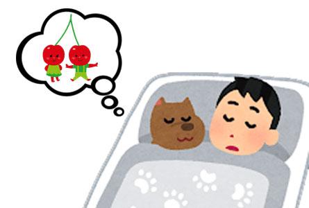 愛犬がさくらんぼを食べてしまった時の症状のまとめ