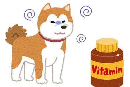 ビタミンEは抗酸化作用があり貧血を防いでくれる!