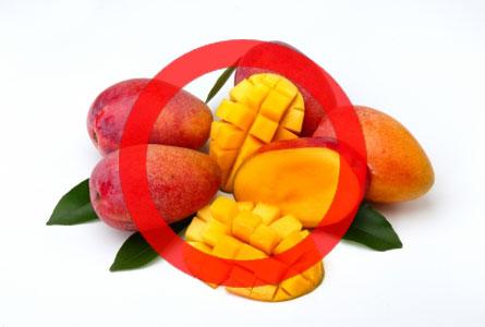 犬はマンゴーを食べても大丈夫!