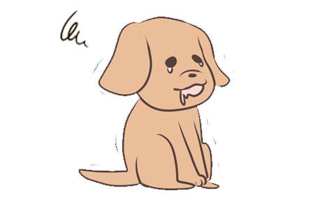 愛犬が玉ねぎを食べてしまった時の症状
