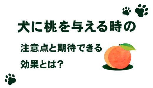 【食べてもいいの?】犬に桃を与える時の注意点と期待できる効果とは?