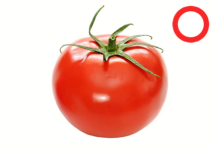 犬はトマトを食べても大丈夫!