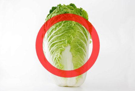 犬は白菜を食べても大丈夫!