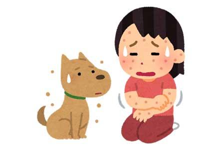 ドッグフードのアレルギーについて