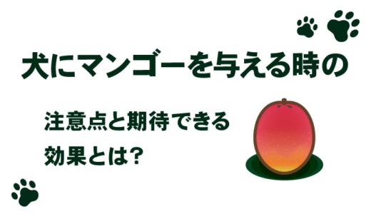 犬にマンゴーを与える時の注意点と期待できる効果とは?